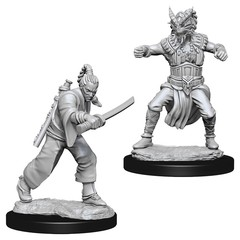 D&D Nolzur's Marvelous Miniatures - Human Male Monk