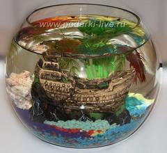 Мини аквариум шар 5 л премиум