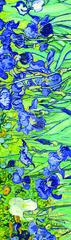 Əlfəcin Van Gogh 5