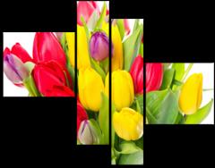 """Модульная картина """"Разноцветные тюльпаны"""""""