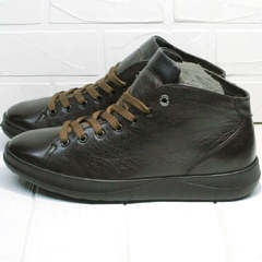 Осенне весенние кроссовки ботинки мужские Ikoc 1770-5 B-Brown.