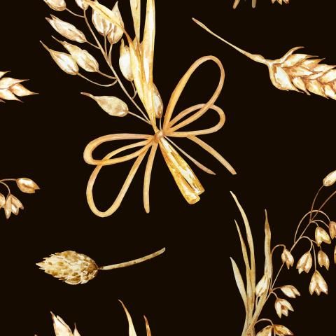 Сухие полевые цветы