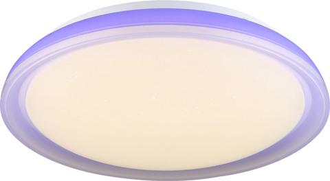 INL-9338C-24 Purple