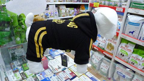 Спортивный костюм для мелких пород собак, черный, велюр, флис