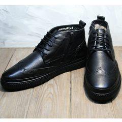 Ботинки мужские зимние кожаные Rifellini Rovigo C8208 Black