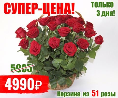 51 красная роза в корзине #3435
