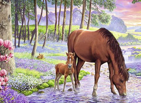 Картина раскраска по номерам 40x50 Лошадь с жеребенком