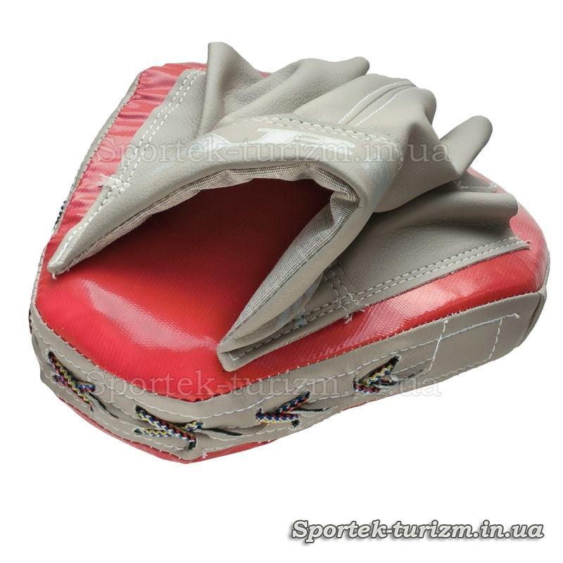 Вид сзади на гнутую боксерскую лапу