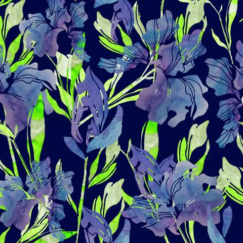 Ирисы на тёмно-синем фоне