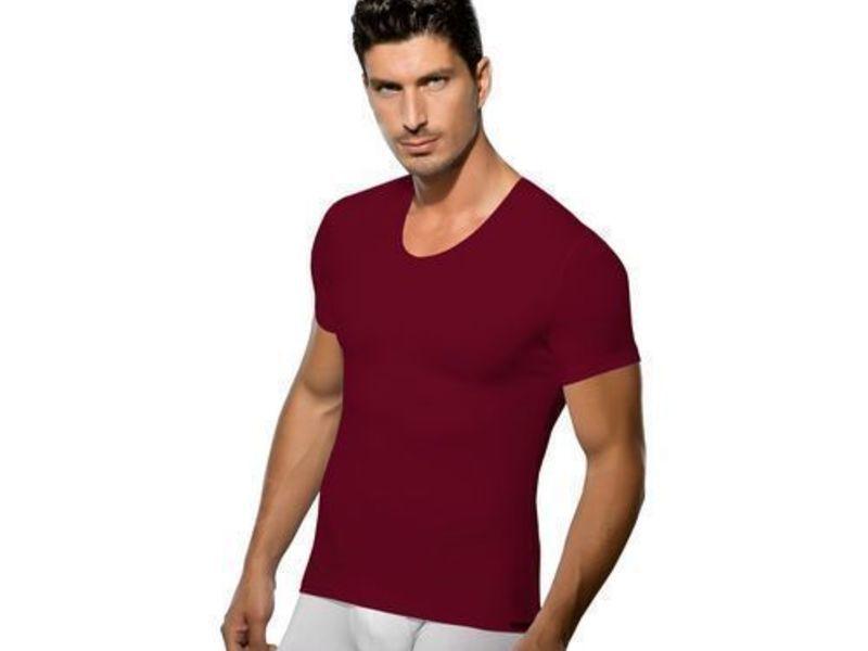 Мужская футболка бордовая Doreanse 2855