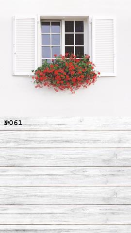 Фотофон виниловый «Белый дом» №061
