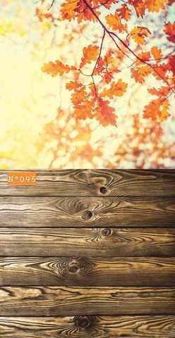 Фотофон стена пол №296 Осенние листья