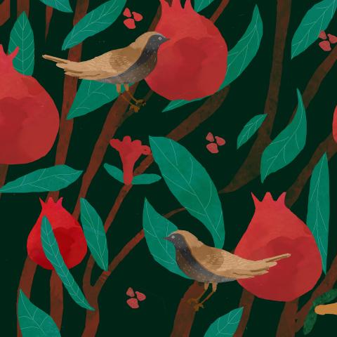 гранаты/pomegranate fruit