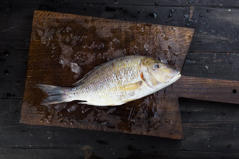 Императорская рыба (охлажденная) Шри-Ланка