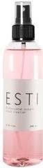 ESSTIR очиститель кистей спиртосодержащий спрей 250мл