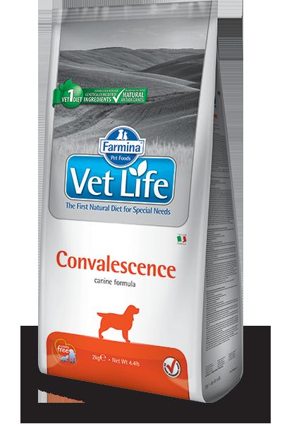 Сухой корм Корм для собак, FARMINA Vet Life Convalescence, в период выздоровления farmina-vet-life-canine-convalescence_web.png