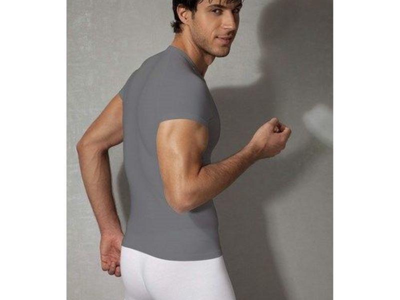 Мужская футболка темно-серая Doreanse 2535