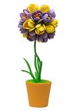 Фиолетово-жёлтый