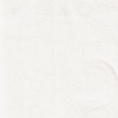Искусственная кожа King white (Кинг уайт)