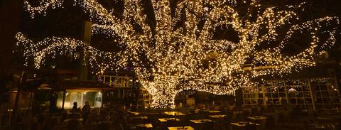 Шланг для деревьев дюралйт 100 метров теплый белый цвет