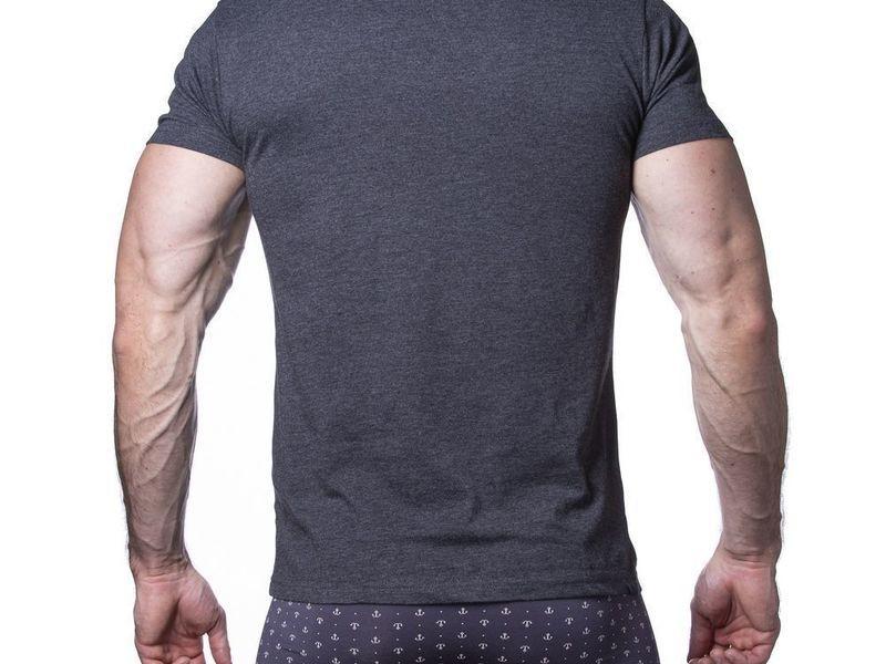 Мужская футболка темно-серая Sergio Dallini SDT750-3