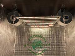 В120хД100хШ60 ГроуБокс PHILIPS 200W LED SUPERSILENT