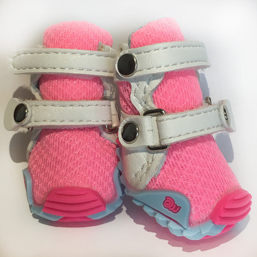 кроссовки для йорка