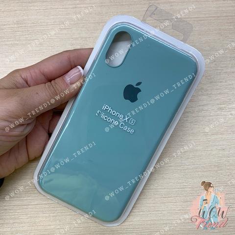 Чехол iPhone X/XS Silicone Slim Case /mint/