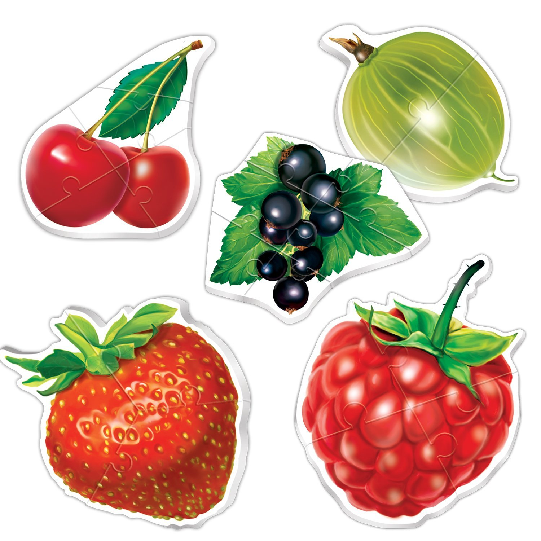 лет обрабатываю ягоды фрукты картинки для доу пролетают очень быстро