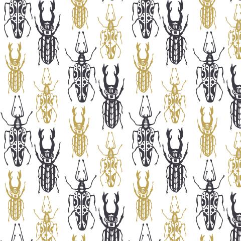Жуковские жуки