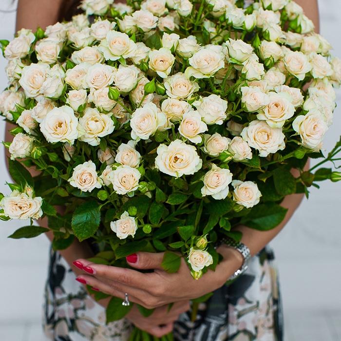 Купить кустовые розы в Перми кремовые.