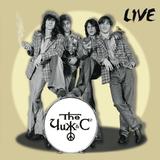 Чиж & Co / Live (LP)