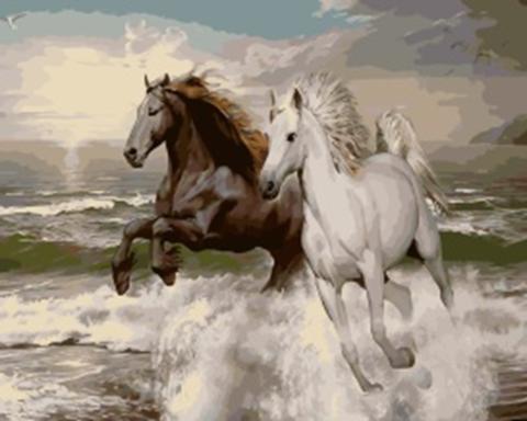 Картина раскраска по номерам 40x50 Два скакуна на берегу моря