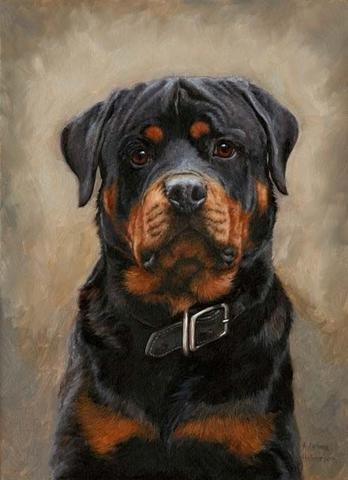 Алмазная Мозаика 40x50 Портрет собаки