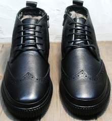 Стильные мужские ботинки зимние Rifellini Rovigo C8208 Black
