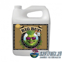 Стимулятор для роста и цветения Big Bud Coco Liquid
