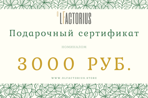 Подарочный сертификат на 3000руб.