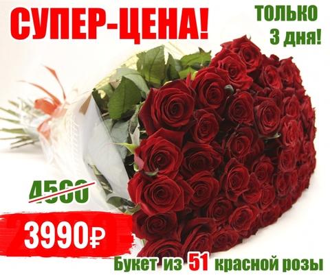 51 красная роза #4435
