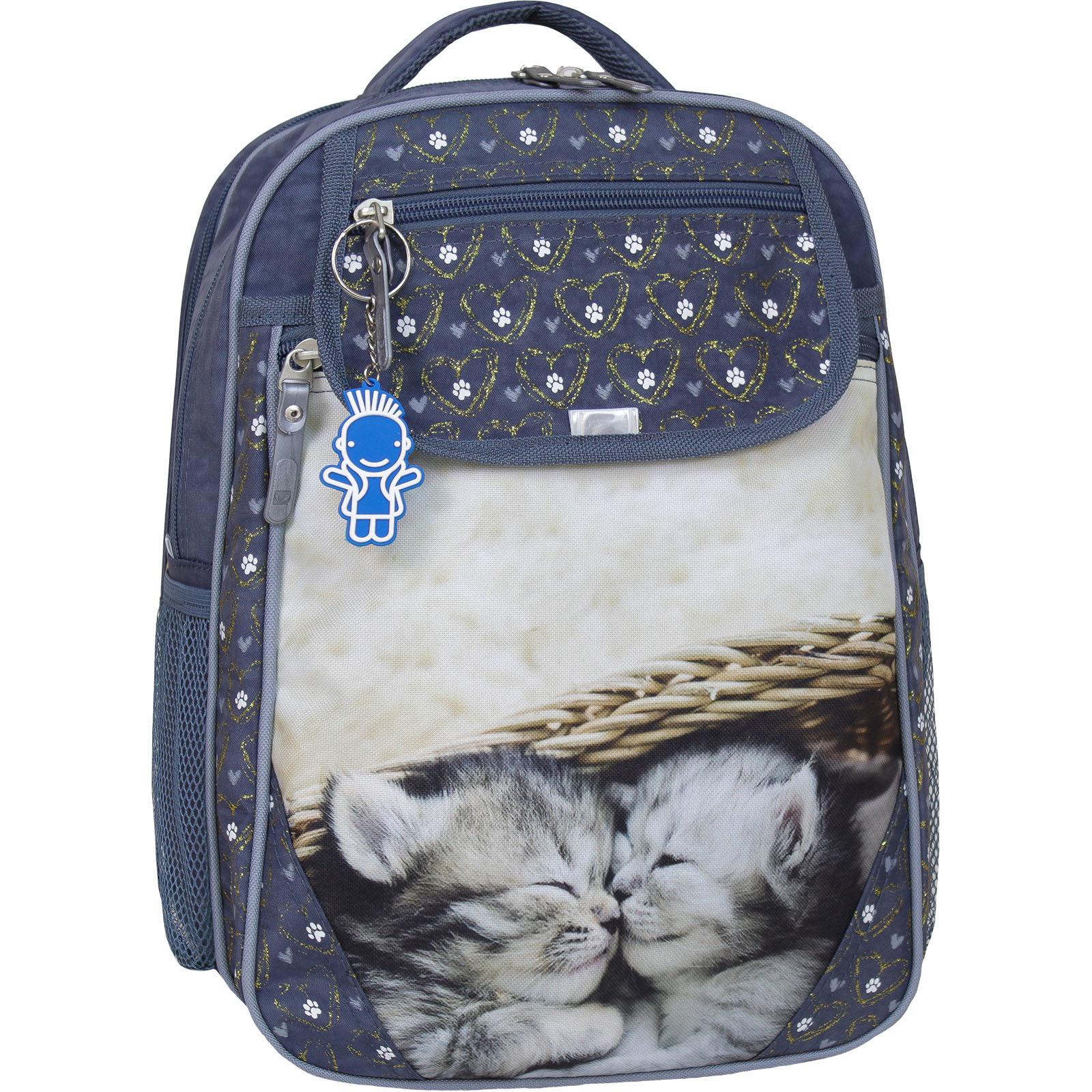 Школьные рюкзаки Рюкзак школьный Bagland Отличник 20 л. 321 сірий 165к (0058070) 1600IMG_5505_165к.jpg