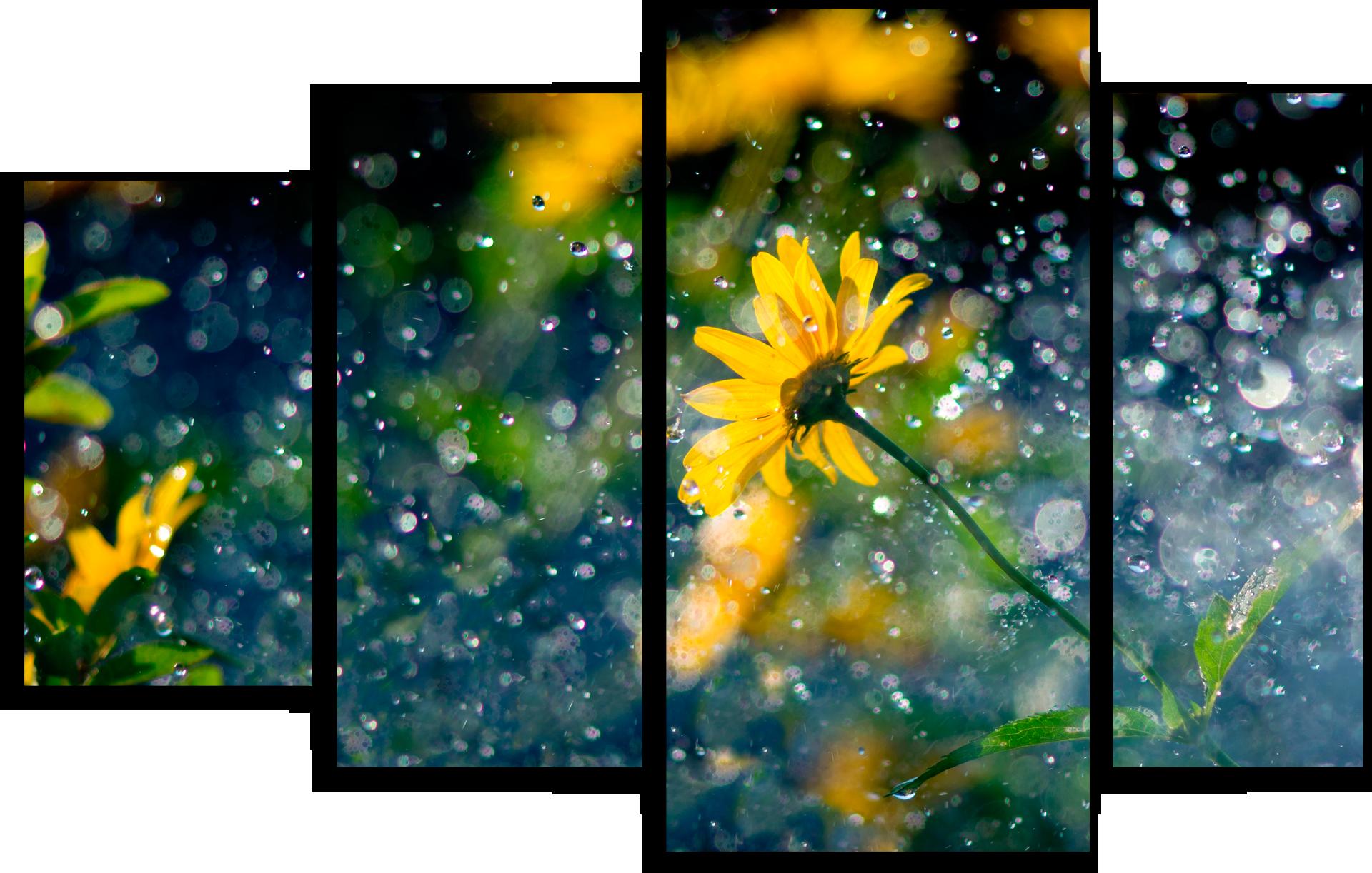 """Цветы Модульная картина """"Красивый Дождь"""" М704.png"""