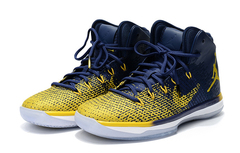 Air Jordan 31 'Michigan'