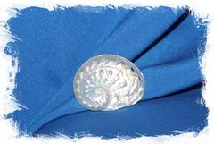 Перламутровая ракушка Галиотис Овина для рукоделия