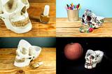 Органайзер для мелочей Skull череп белый Suck UK SK TIDYSKULL1 | Купить в Москве, СПб и с доставкой по всей России | Интернет магазин www.Kitchen-Devices.ru