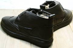 Качественные мужские зимние ботинки Rifellini Rovigo C8208 Black