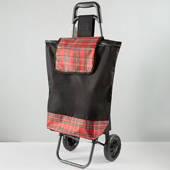 Тележка багажная ручная 25 кг (сумка), 50 кг (каркас) ТБР-21 черная с красным