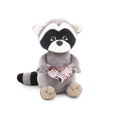RACCOON DANNY: lOVE HEART