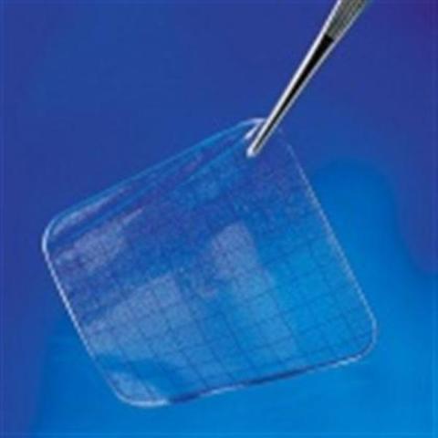 ГидроТак Транспарент для закрытия чистых язв, без адгезива, 5x7,5 см