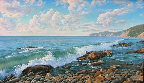 Картина раскраска по номерам 40x50 Дикий берег