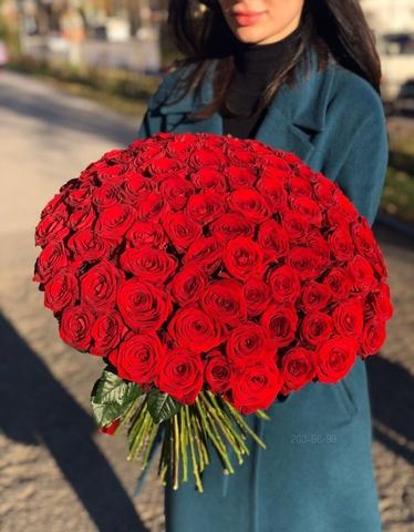 101 красная роза 60 см #14654
