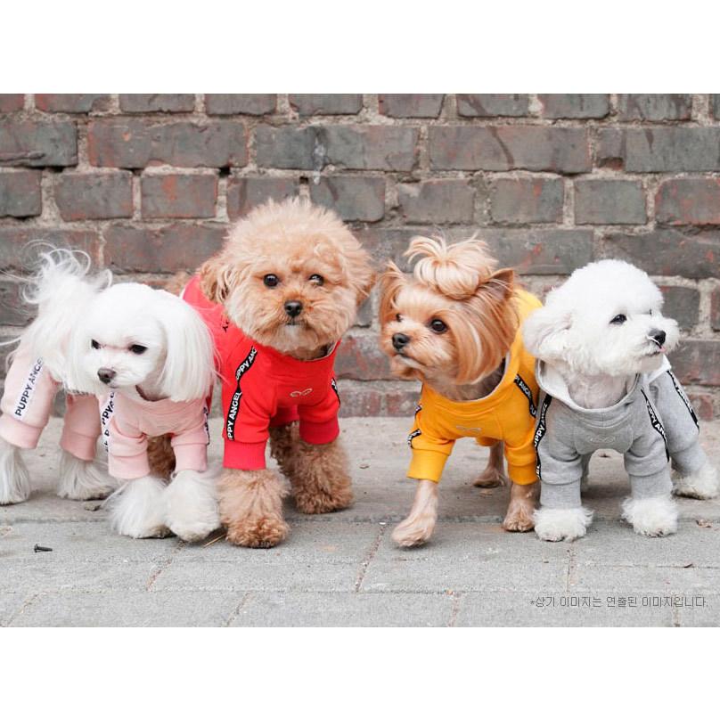 костюмы для собачек